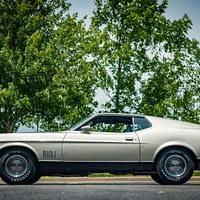 1971 FORD MUSTANG MACH 1 #8077-STL